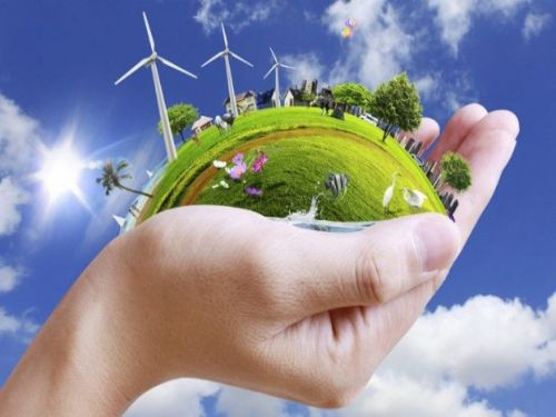 Hình minh họa: Ăn chay góp phần bảo vệ môi trường, yêu thương muôn loài