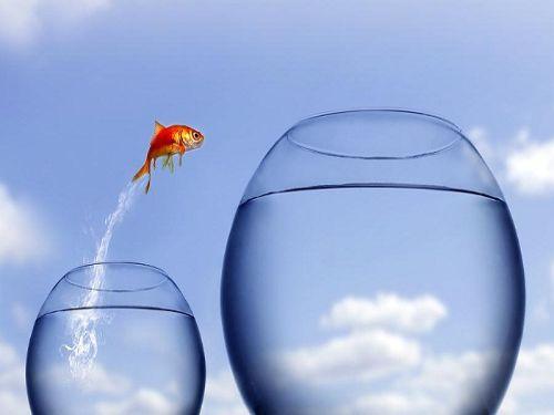 Hình minh họa:Khó khăn thử thách là cơ hội để vượt lên số phận