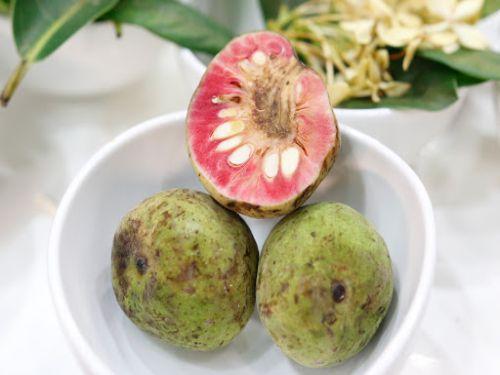 Hình minh họa: Bạn có thể ăn quả chay tươi