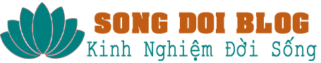 cropped logo song dong blog.png