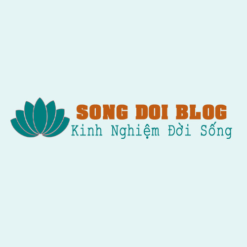 logo song doi blog